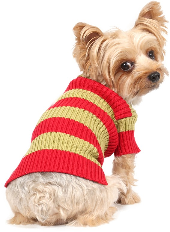 Maglione per cani a righe fucsia e azzurro